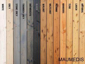 Maumedis